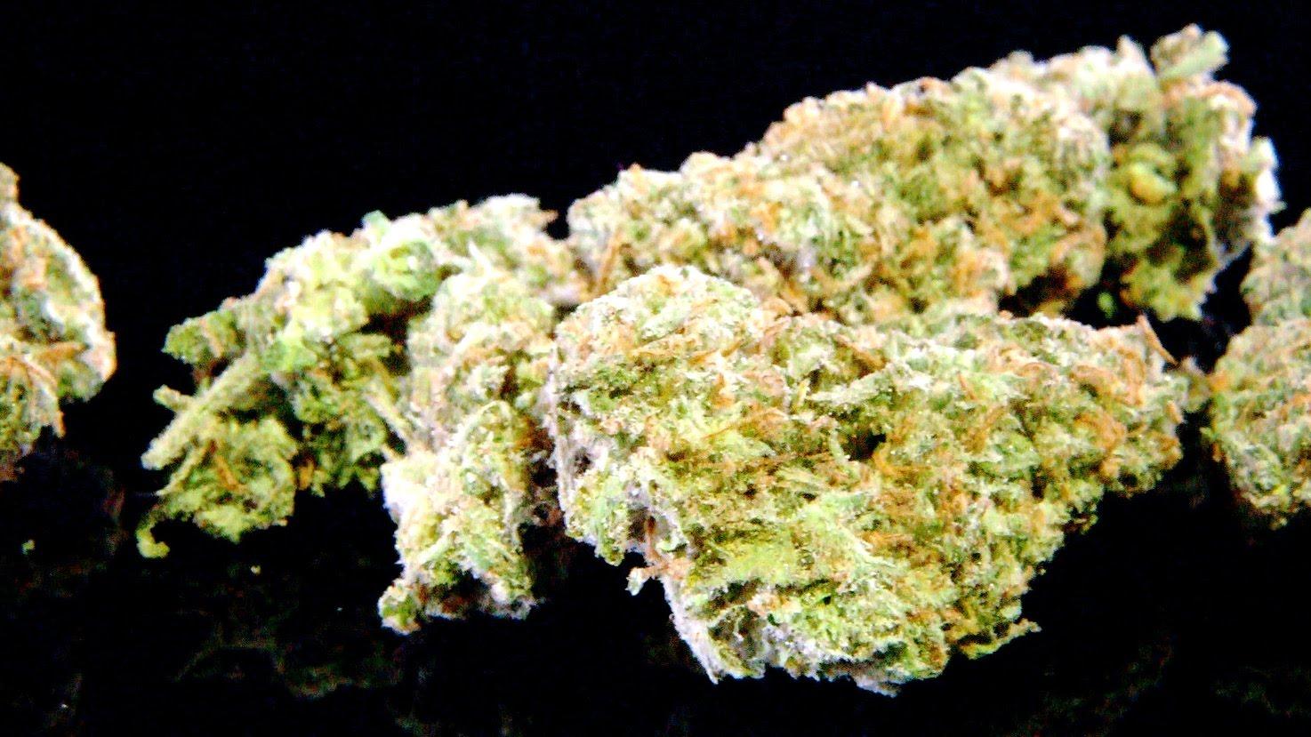 Cannabis Up Close #9: XJ-13 (Hybrid) THC Designs grown from Club 30 LA