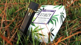 Stiiizy Concentrate Vaporizer Pen Review