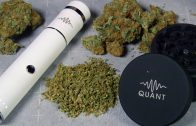Quant-Premium-and-Electric-Grinders-Review-Thumbnail-1