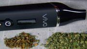Herbva-Viva-Dry-Herb-Vaporizer-Review-Thumbnail-1