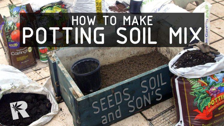 How to Make Potting Mix For Cannabis Plants (Seeds, Soil & Sun: Season 2 Ep 1)