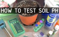 How to Test & Adjust Soil PH for Cannabis (Seeds, Soil & Sun: Season 2 Ep 2)