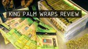king-palm-review-thumbnail