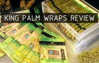 king-palm-review-thumbnail