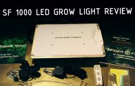Spider Farmer SF 1000 LED Grow Light Review
