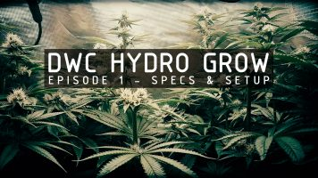 hydroponic-grow-series-episode-1-thumbnail