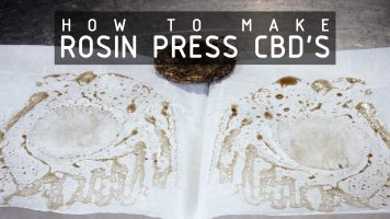 press-cbd-oil-with-rosin-press-cannabasics-116-thumbnail